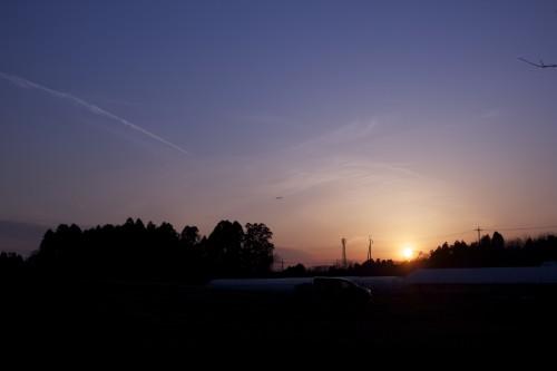 場内からは素敵な夕日を見ることが出来ます。