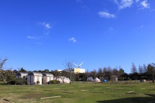 若洲公園キャンプ場(全景)