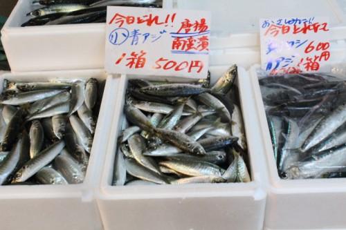 近くの道の駅で鮮魚を売られています。