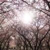春キャンプも寒い??4・5月も夕方〜朝方まで冷え込むので気をつけて!!