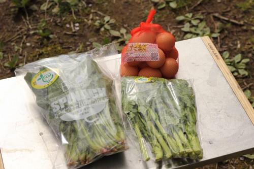 卵は近くの直売所、野菜は君津の湯で購入。