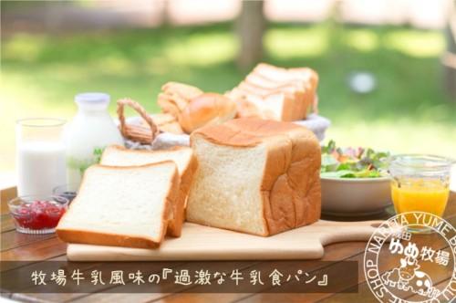 成田ゆめ牧場のパンは美味しくて有名です。