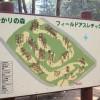 茨城つくば市 豊里ゆかりの森キャンプ場