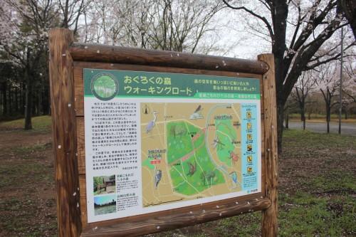 場内には散策コースがあります。