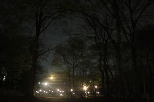 夜は裸電球が点きます。