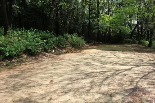 サイトは林間サイトですが、清掃がきちんとされています。