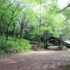 茨城 北山公園 2014年5月1日(photo)