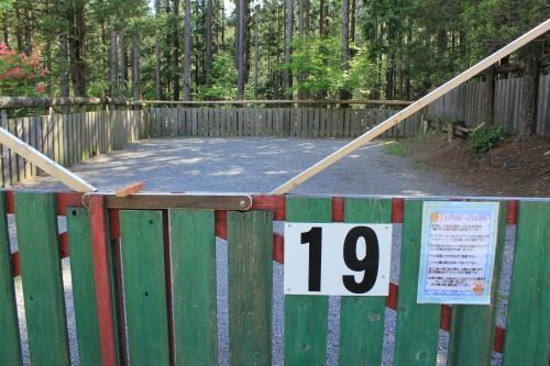 ドッグフリーサイトは柵があって、中はリードフリーです。