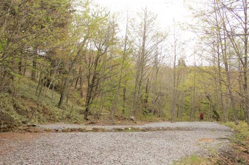 山側にあるサイトは逆に広いです。2ルームテントも張れます。