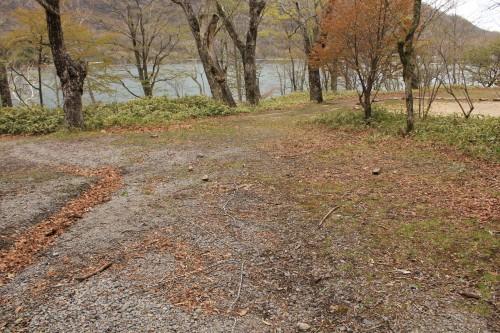 テントサイト。芝生と砂利が混ざったような地面