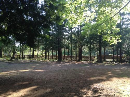 オートインキャンプサイト