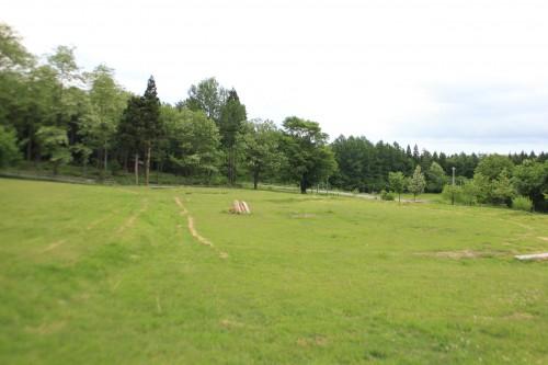 高原の自然