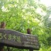 福島県 あぶくまキャンプランド 2014年6月6日〜(photo)