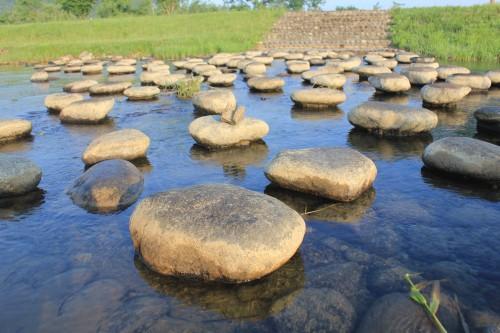 場内には小川が流れています。夏場はこちらで魚つかみ取り体験をやるそうです。