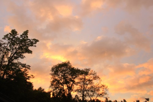 リンリン公園キャンプ場の夕日の写真