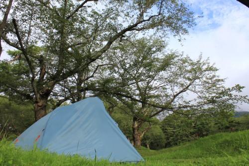 青森県 桜林公園キャンプ場 2014年8月19日〜20日