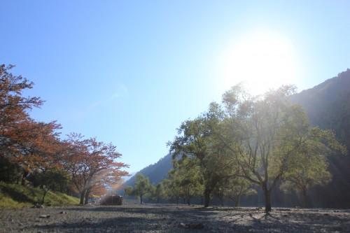滋賀県 朽木キャンプ場(通称) 2014年10月24日〜25日