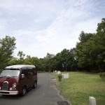 国営讃岐まんのう公園オートキャンプ場の一般カーサイトCサイト(オートキャンプサイト)の様子