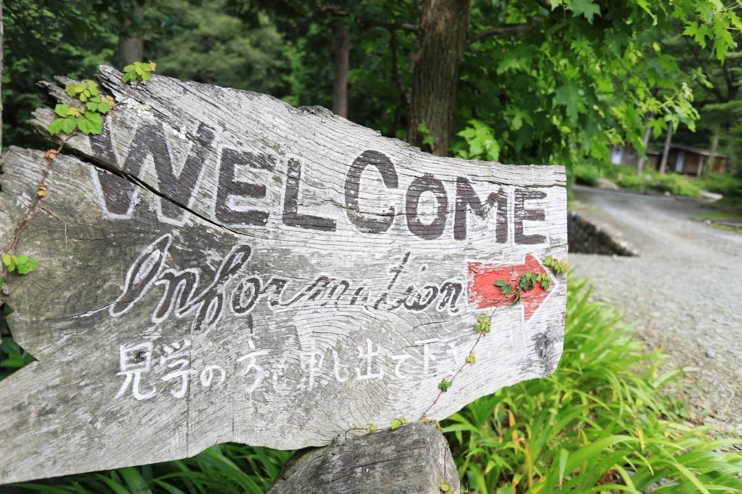 徳島県 コットンフィールド 2015年6月21日〜22日