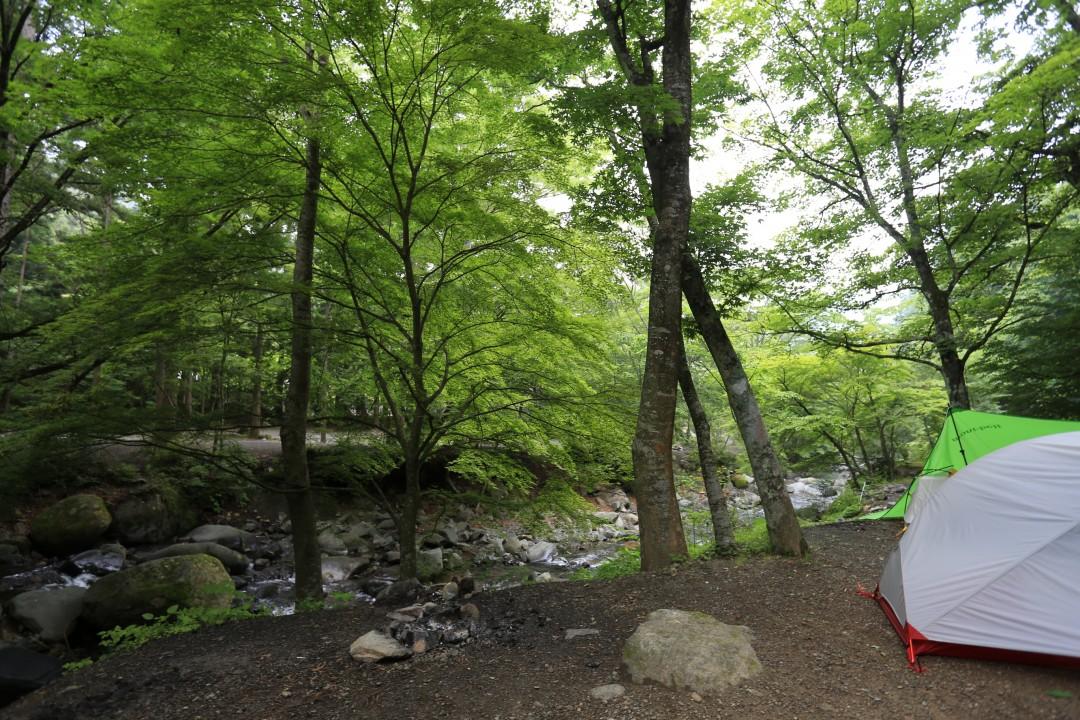 山梨県 道志の森キャンプ場 2015年6月24日〜25日