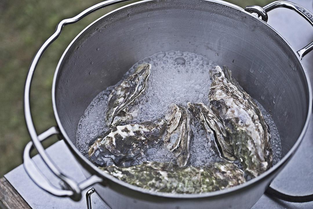 ステンレスダッチオーブンとフライパンの組み合わせが使い勝手が抜群でおすすめ