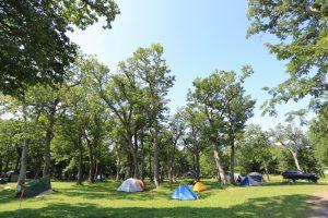 【知床にあるキャンプ場】北海道 国設知床野営場 2015年7月24日〜25日