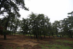 【鳥取砂丘まで車で3分】鳥取県 柳茶屋キャンプ場 2015年8月30~31日
