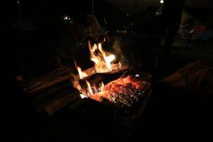 【質問コーナー】焚き火するのにキャンプ場に落ちている枝って使ってもいいの?