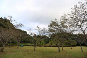 【公園内に併設】熊本県 人吉クラフトパーク石野公園キャンプ場 9月10~11日