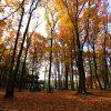 【ちょっと早めに準備】秋冬キャンプがしたいあなたが準備すべきモノ。