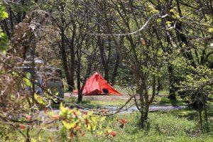 今年こそキャンプを始めたい人の為の初めてのテント選びとその方法について