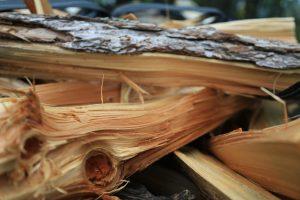 キャンプ場の管理人さんへ!販売されている薪がしょぼいとちょっと萎えます。。。