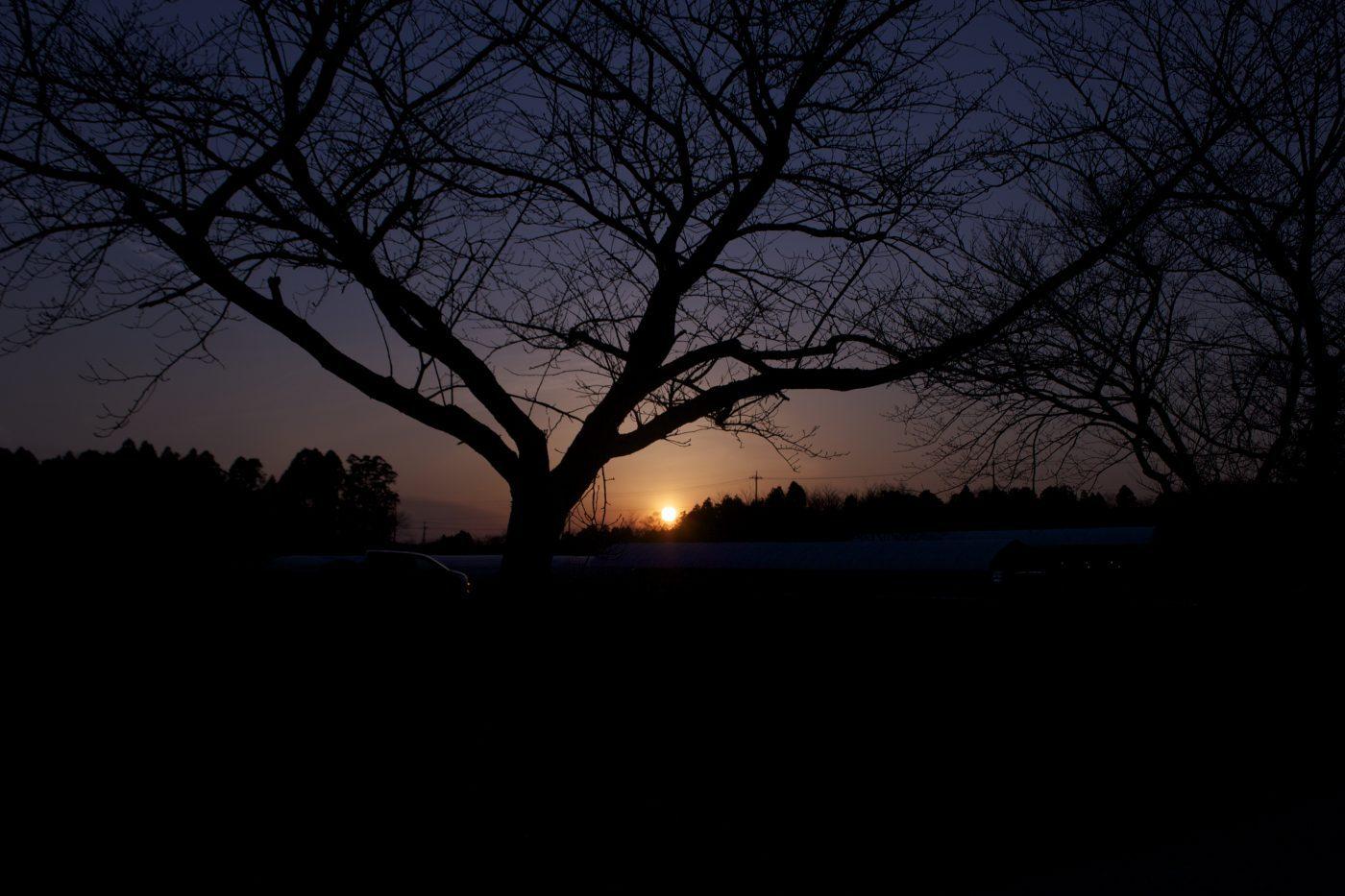 夕日が沈む様子を眺めて時間を感じる