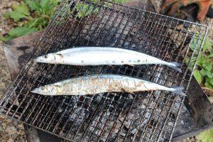 魚を焼くとBBQグリルに匂いがつきます