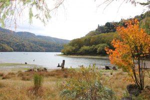 秋キャンプって夏キャンプと何が違うの?という方に秋キャンプの良さを語ります。