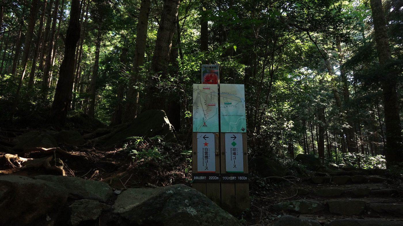 tsukuba11