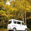 【車のレビュー】スズキ エブリィが燃費も積載量も良くてキャンプにぴったり過ぎてビビる。