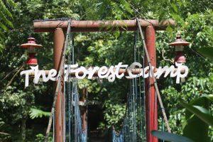 【フィリピンのキャンプ場】プール、BBQ、コテージ、キャンプが楽しめる「THE FOREST CAMP」