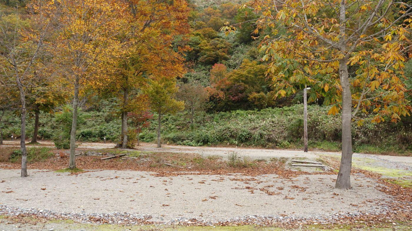 白い森オートキャンプ場のサイト例