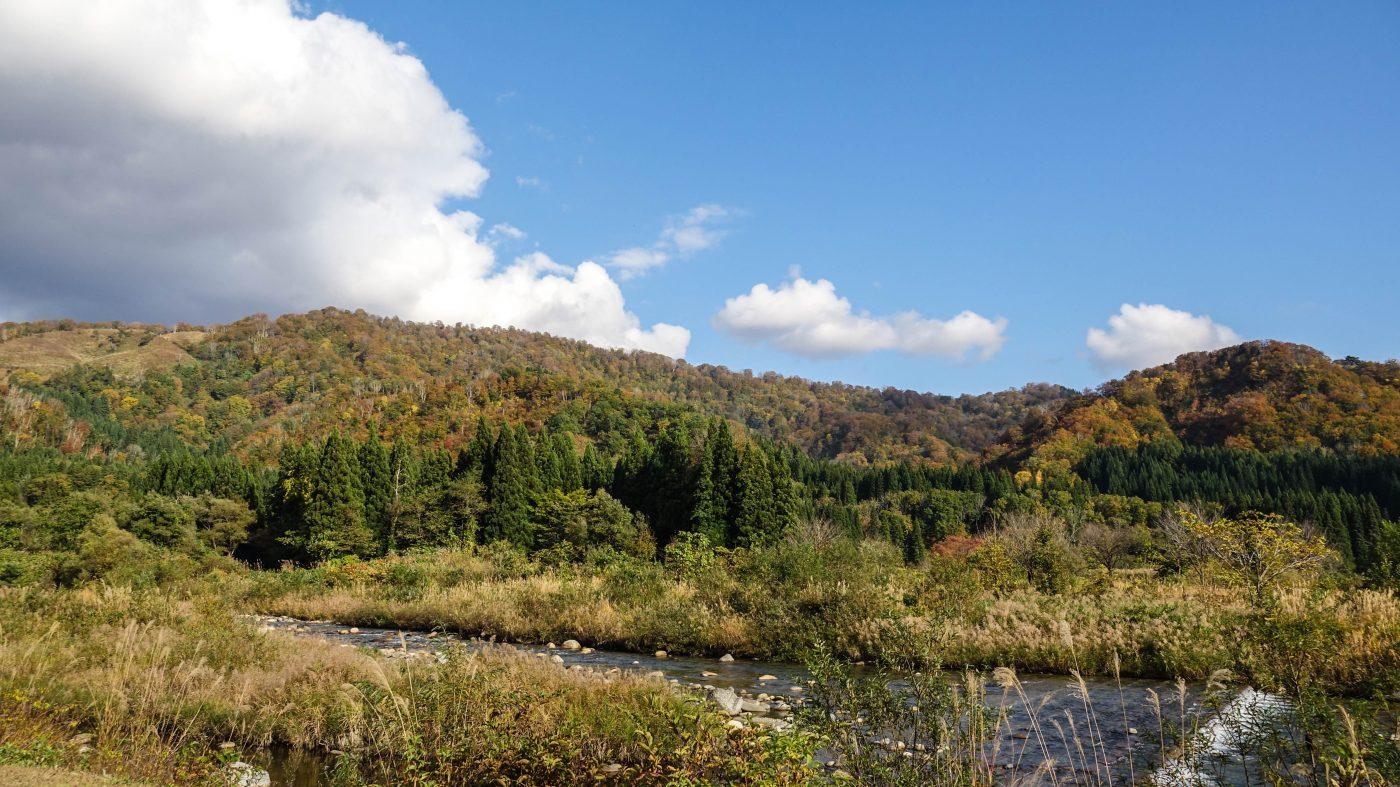 白い森オートキャンプ場の目の前にある川は夏場は子どもたちで賑わいます。