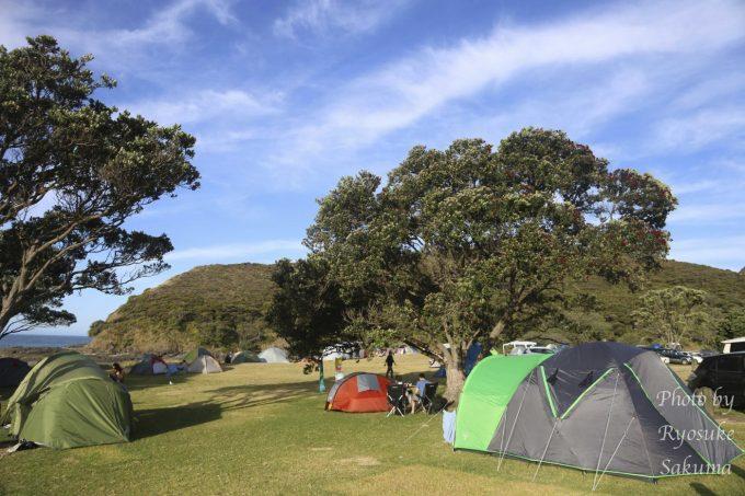 Tapotupotu campsite9