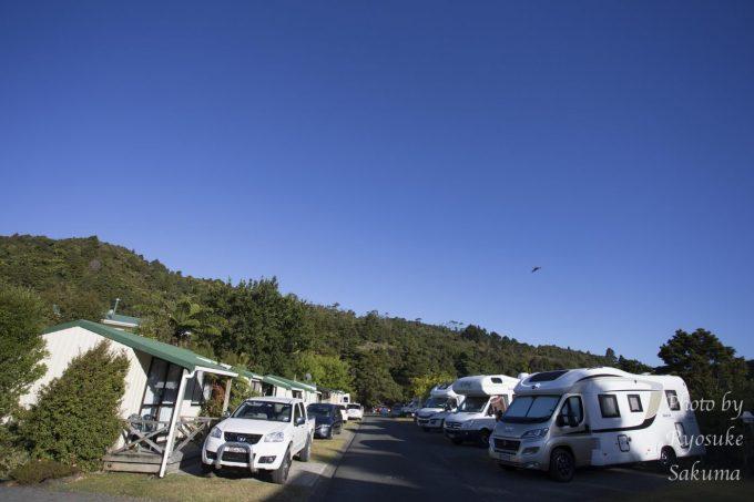 Kauri Coast Top 10 Holiday Park3