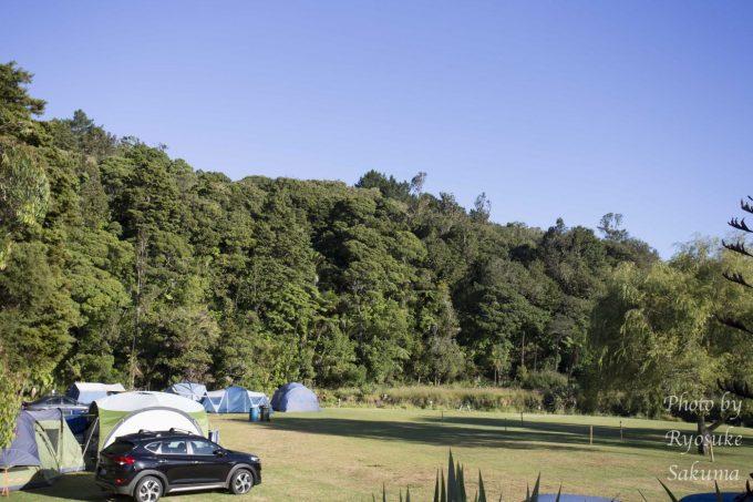 Kauri Coast Top 10 Holiday Park2