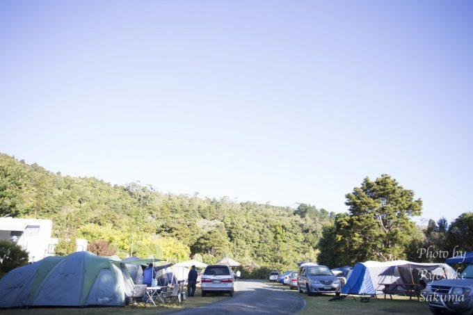 Kauri Coast Top 10 Holiday Park4