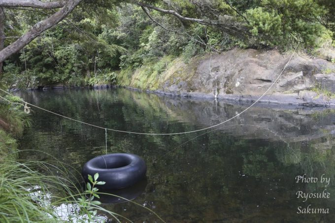Kauri Coast Top 10 Holiday Park19