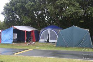 全部で300サイトもある!「Raglan Kopua Holiday Park」キャンプ場