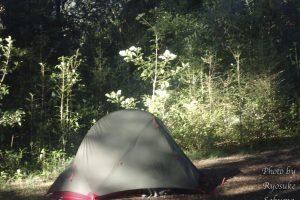さくぽんのニュージーランド南島キャンプ旅日記4日目〜5日目