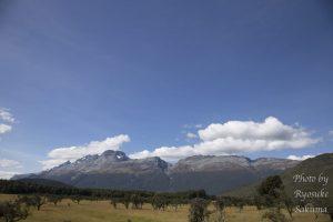【森に入ったよ】さくぽんのニュージーランド南島キャンプ旅日記12日目〜14日目
