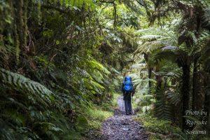 【3泊4日トレッキング】さくぽんのニュージーランド南島キャンプ旅日記21日目〜22日目