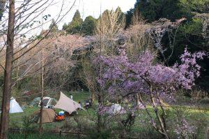【何度だって書くよ】キャンプは楽しい!何が楽しいって、楽しみ方に正解が無いこと!